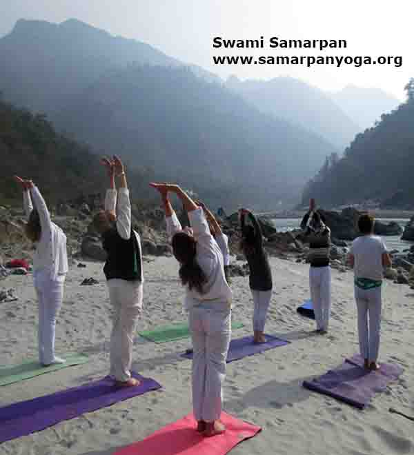 hatha yoga course in rishikesh
